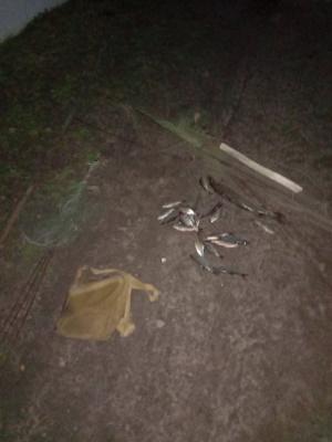 На Львівщині протягом місяця викрито 235 порушень природоохоронного законодавства