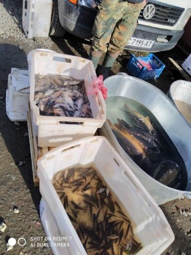 Протягом тижня викрито 79 порушень природоохоронного законодавства, - Львівський рибоохоронний патруль