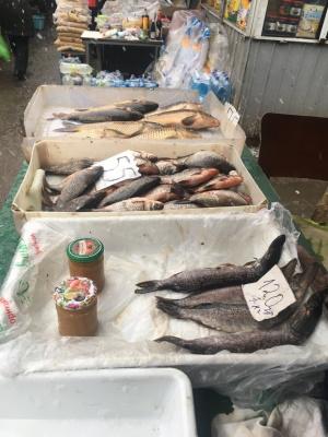 Протягом тижня викрито 63 порушення природоохоронного законодавства, - Львівський рибоохоронний патруль
