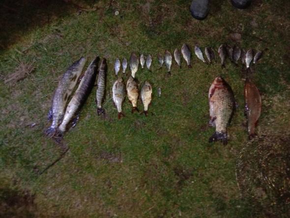 Протягом тижня викрито 42 порушень природоохоронного законодавства, - Львівський рибоохоронний патруль