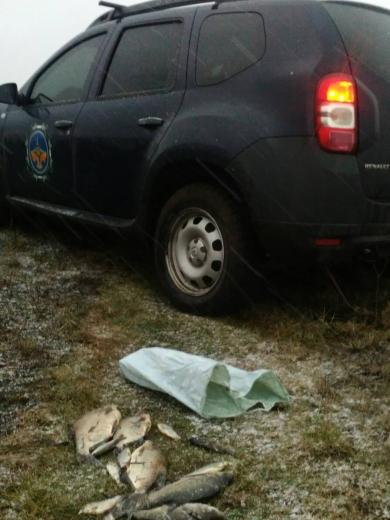 За минулий тиждень викрито 54 порушення природоохоронного законодавства, - Львівський рибоохоронний патруль.