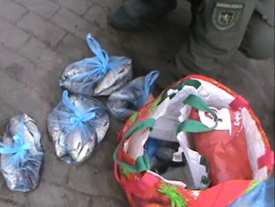 За 12 днів рибпатрульні Львівщини виявили 22 порушення